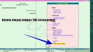 Delete empty ledger tdl screenshot